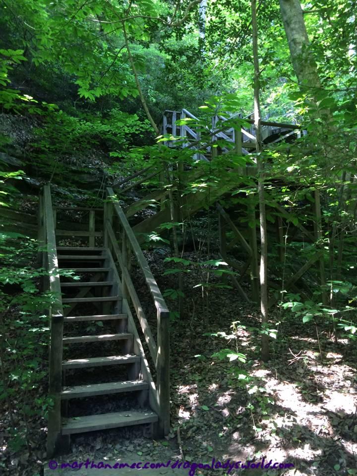 Stairs-RavenRock-WM